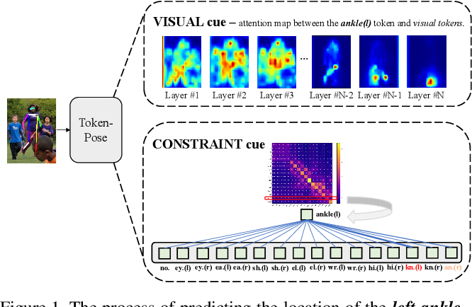 Figure 1 for TokenPose: Learning Keypoint Tokens for Human Pose Estimation