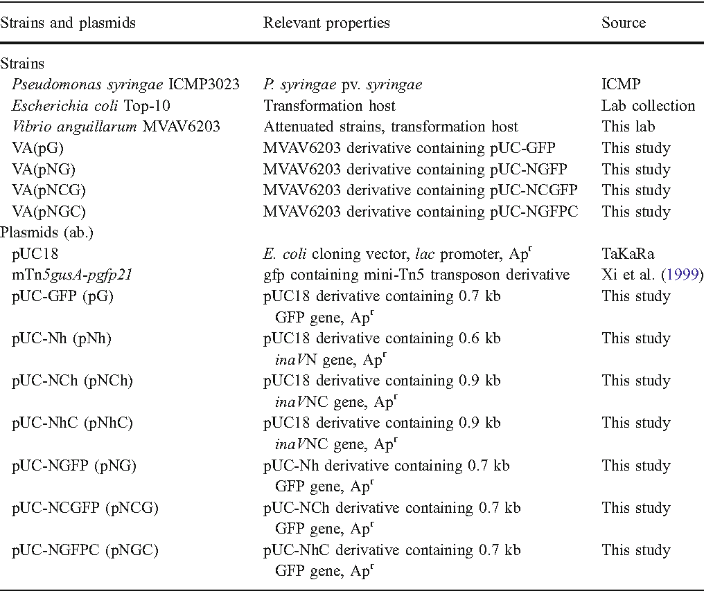 Table 1 Strains and plasmids used in this study Strains and plasmids Relevant properties Source