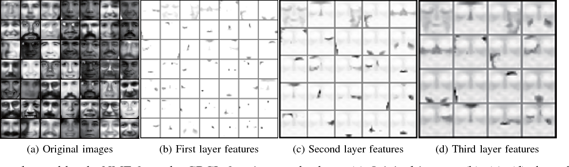 Figure 3 for Learning the Hierarchical Parts of Objects by Deep Non-Smooth Nonnegative Matrix Factorization