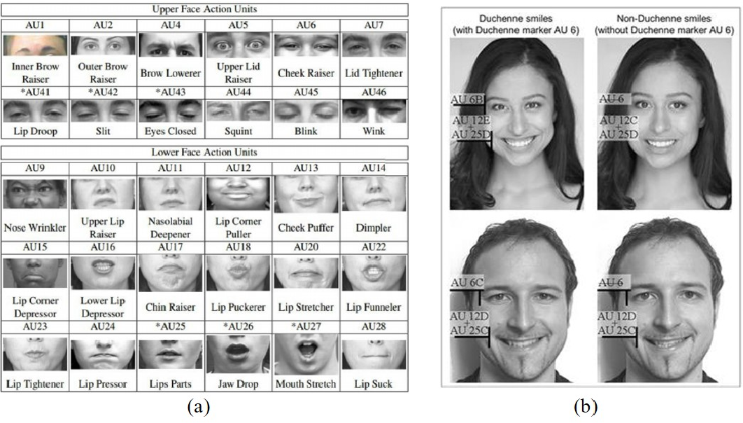 Figure 2 for Detection of Genuine and Posed Facial Expressions of Emotion: A Review