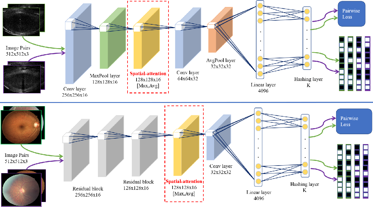 Figure 2 for Attention-based Saliency Hashing for Ophthalmic Image Retrieval