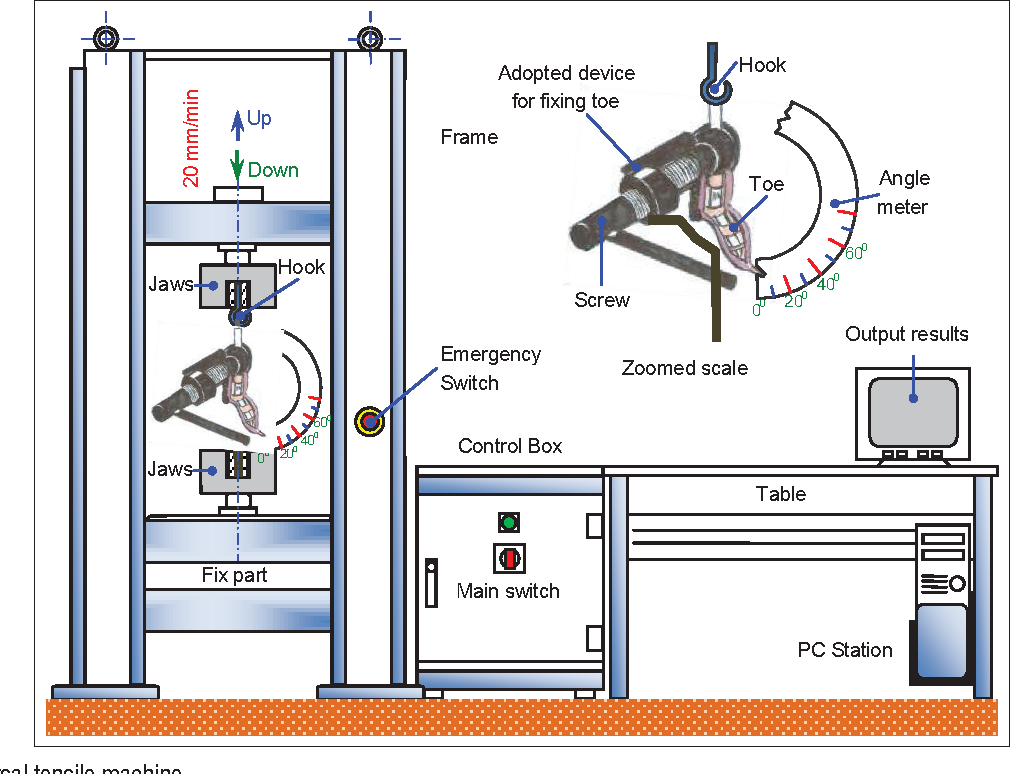 Biomechanical and Macroscopic Evaluations of the Effects of 5 ...