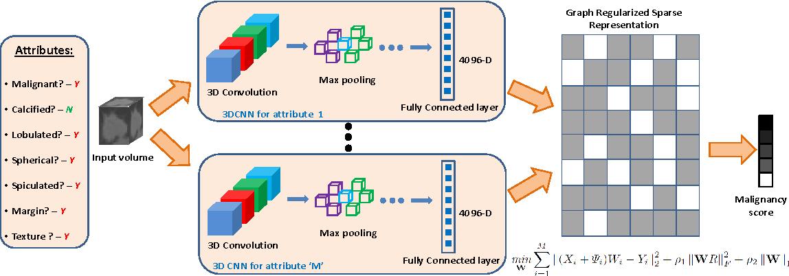 Figure 3 for Risk Stratification of Lung Nodules Using 3D CNN-Based Multi-task Learning
