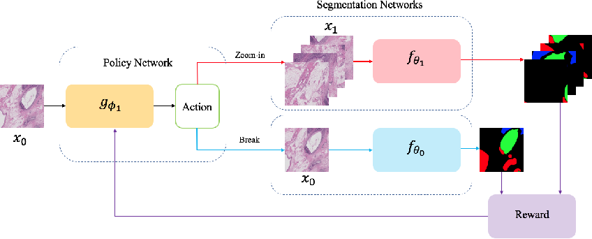 Figure 4 for Reinforced Auto-Zoom Net: Towards Accurate and Fast Breast Cancer Segmentation in Whole-slide Images
