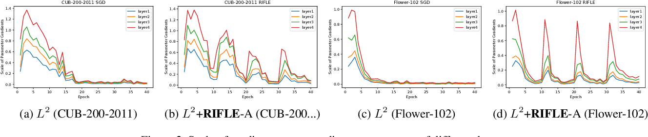 Figure 4 for RIFLE: Backpropagation in Depth for Deep Transfer Learning through Re-Initializing the Fully-connected LayEr