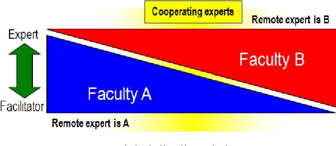 Figure 2. Digital distributed classroom expert-facilitator model continuum.