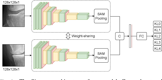 Figure 3 for Semixup: In- and Out-of-Manifold Regularization for Deep Semi-Supervised Knee Osteoarthritis Severity Grading from Plain Radiographs