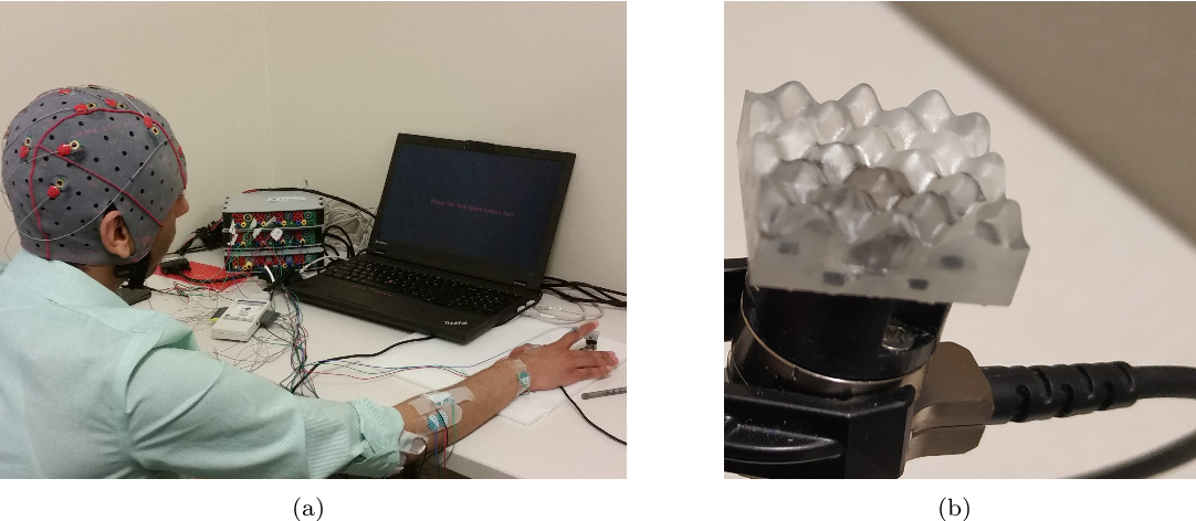 Figure 1 for EEG-based Texture Roughness Classification in Active Tactile Exploration with Invariant Representation Learning Networks
