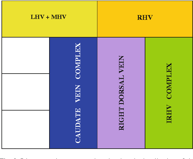 Anatomy Of The Retrohepatic Segment Of The Inferior Vena Cava And