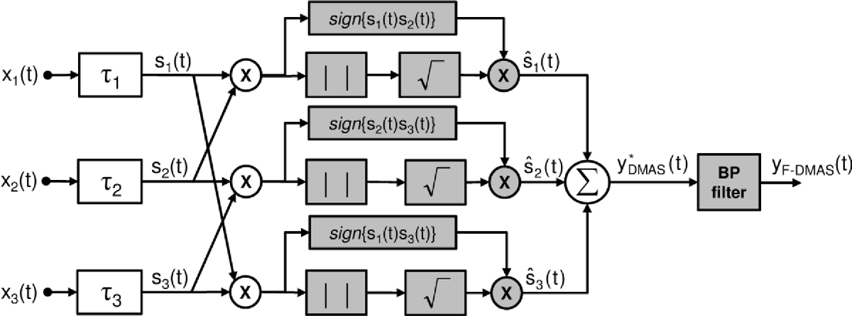 The Delay Multiply and Sum Beamforming Algorithm in Ultrasound B
