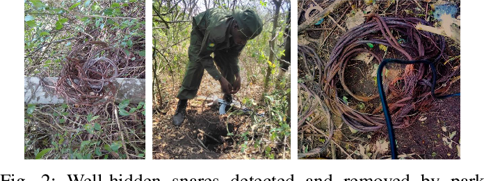 Figure 3 for Stay Ahead of Poachers: Illegal Wildlife Poaching Prediction and Patrol Planning Under Uncertainty with Field Test Evaluations
