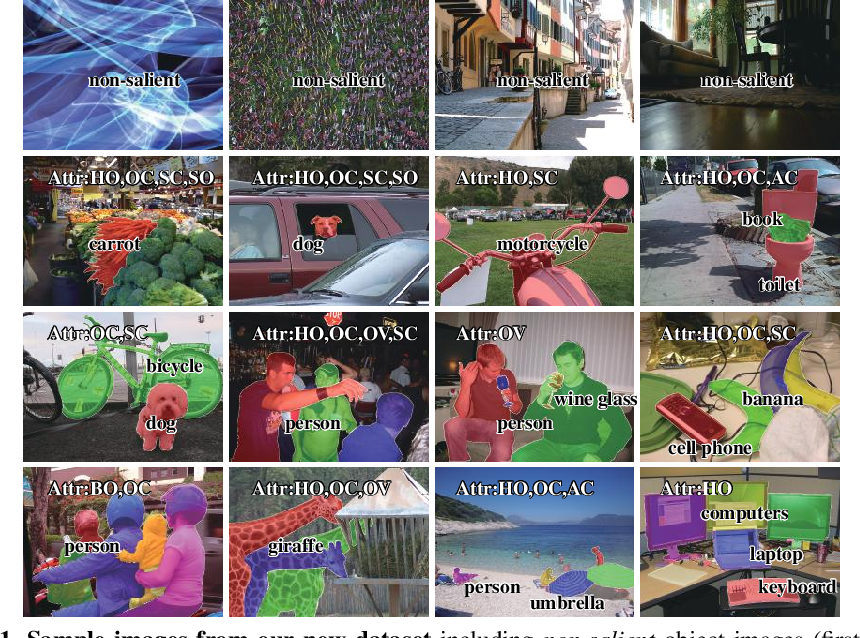 Figure 1 for Salient Objects in Clutter: Bringing Salient Object Detection to the Foreground