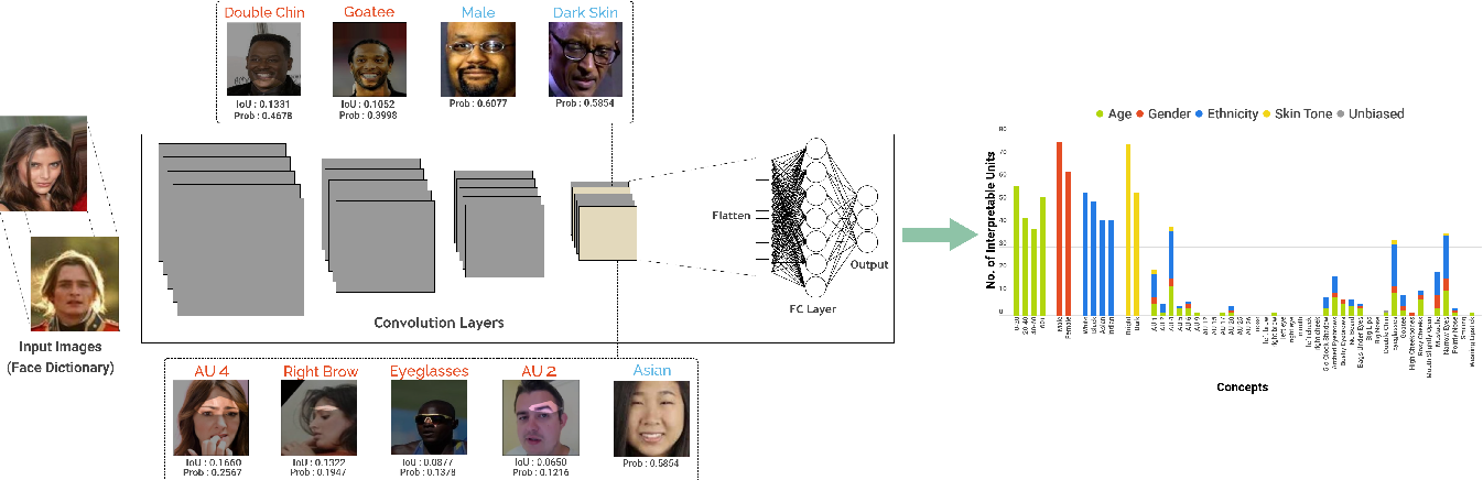 Figure 1 for Interpreting Face Inference Models using Hierarchical Network Dissection