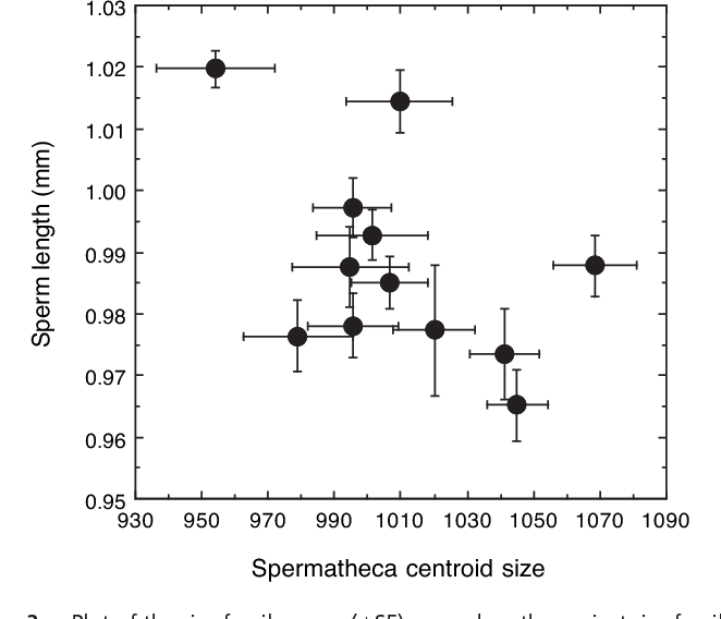 Fig. 3. Plot of the sire family mean ( SE) sperm lengths against sire family mean ( SE) spermatheca centroid size. The data show a genetic correlation across the sexes for these sperm and sperm storage traits.