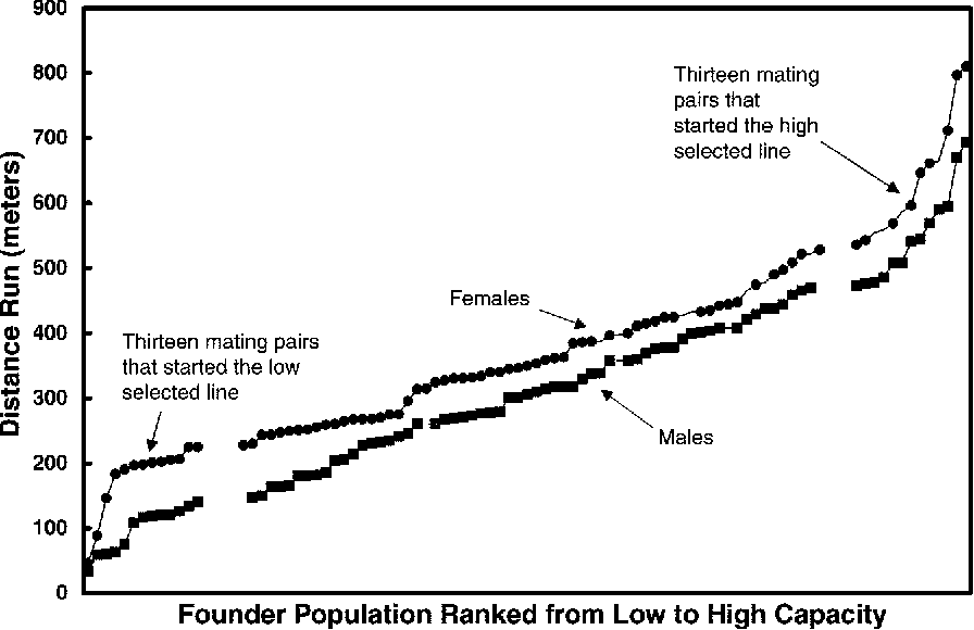 Fig. 2. Capacity ranking from low to high for females (circles, n 5 88) and males (squares, n 5 80) of the founder population. The 13 lowest and 13 highest sexed pairs were randomly mated to produce the first generation of low- and high-line rats.