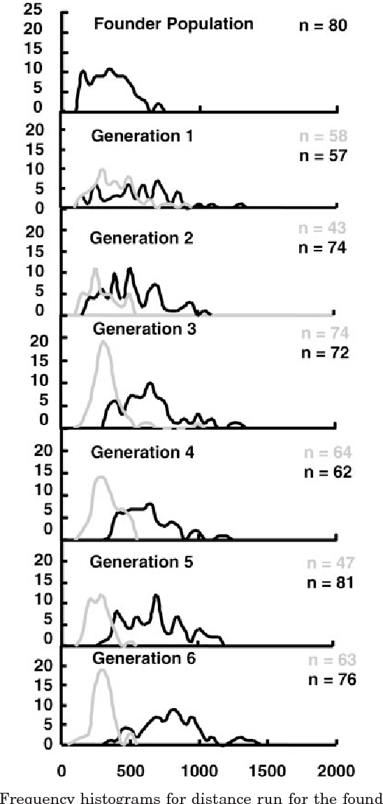 Fig. 4. Frequency histograms for distance run for the founder population males and the low- and high-line males at generations 1–6. Low line is shown in gray; high line is in black.