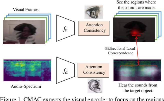 Figure 1 for Cross-Modal Attention Consistency for Video-Audio Unsupervised Learning