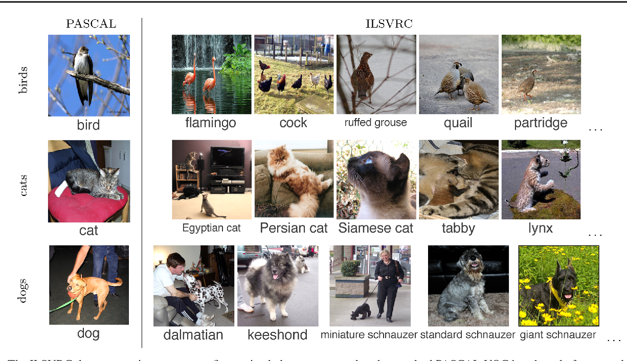 Figure 3 for ImageNet Large Scale Visual Recognition Challenge