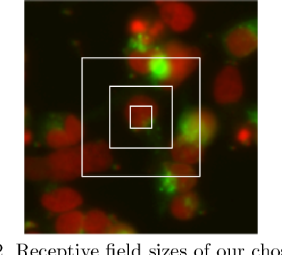 Figure 2 for Phenotypic Profiling of High Throughput Imaging Screens with Generic Deep Convolutional Features