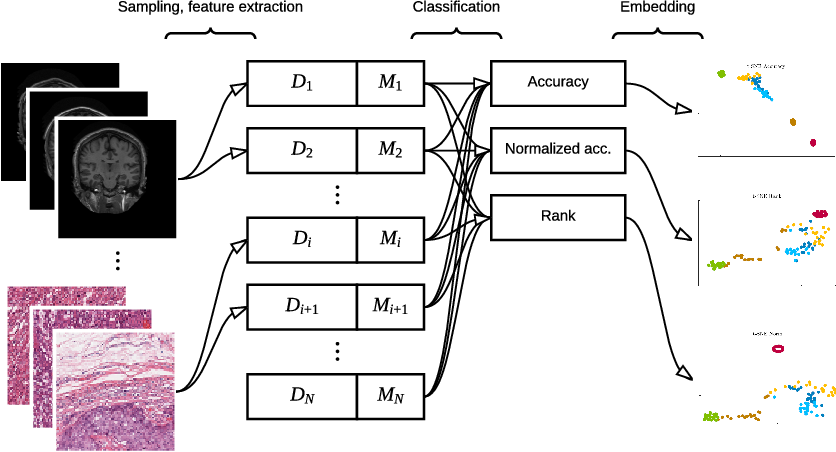 Figure 1 for Exploring the similarity of medical imaging classification problems