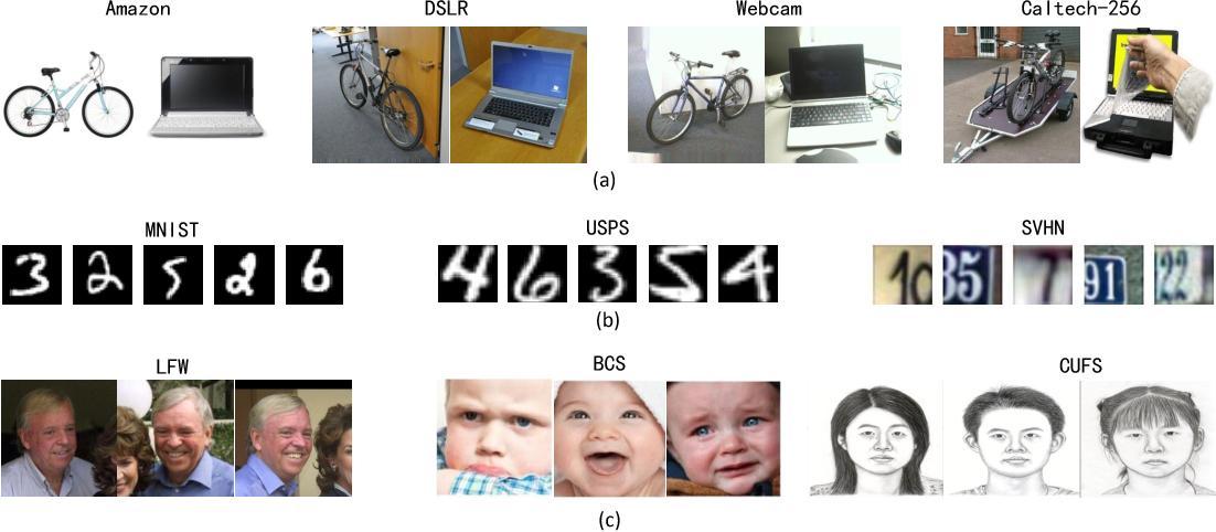 Figure 1 for Deep Visual Domain Adaptation: A Survey
