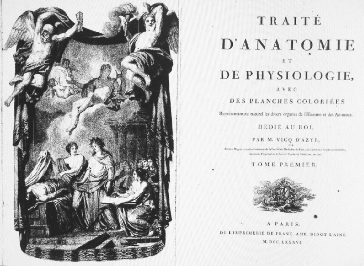 Félix Vicq d\'Azyr (1746–1794): early founder of neuroanatomy and ...
