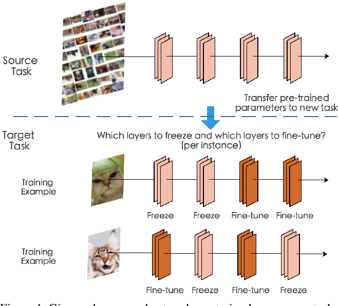 Figure 1 for SpotTune: Transfer Learning through Adaptive Fine-tuning