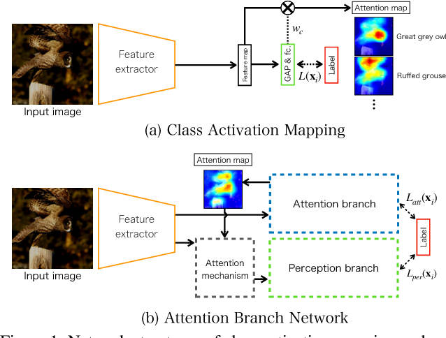 Figure 1 for Attention Branch Network: Learning of Attention Mechanism for Visual Explanation