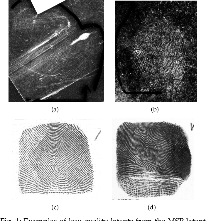 Figure 1 for End-to-End Latent Fingerprint Search