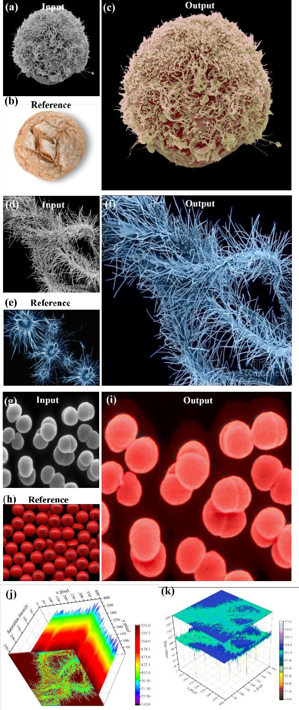 Figure 4 for Nanoscale Microscopy Images Colourisation Using Neural Networks