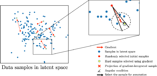 Figure 2 for Suggestive Annotation of Brain Tumour Images with Gradient-guided Sampling