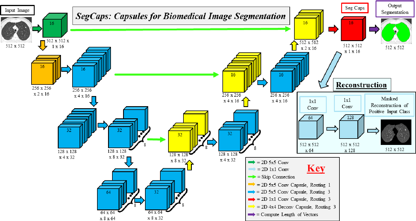 Figure 4 for Capsules for Biomedical Image Segmentation