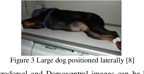 Figure 4 for Lightweight Combinational Machine Learning Algorithm for Sorting Canine Torso Radiographs