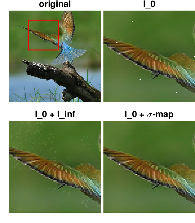 Figure 1 for Sparse and Imperceivable Adversarial Attacks
