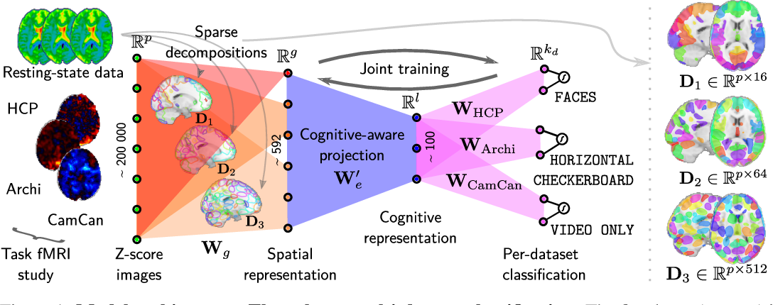 Figure 1 for Learning Neural Representations of Human Cognition across Many fMRI Studies