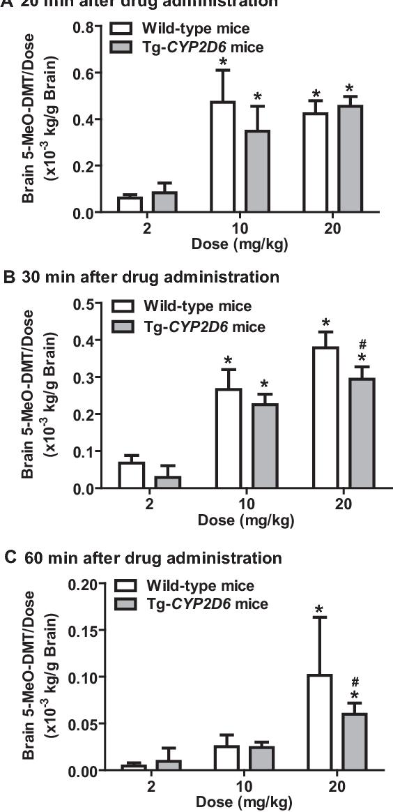 Figure 6 from Nonlinear pharmacokinetics of 5-methoxy-N,N