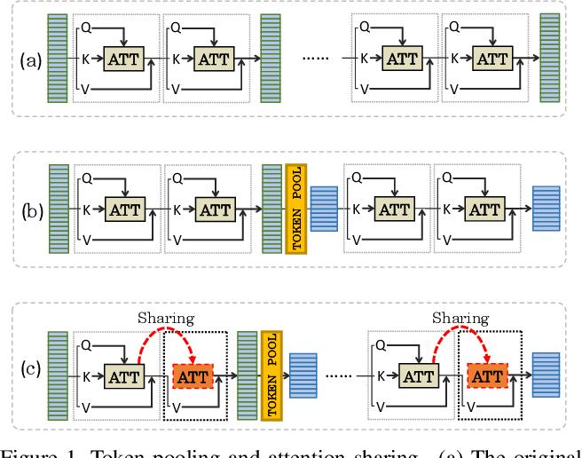 Figure 1 for PSViT: Better Vision Transformer via Token Pooling and Attention Sharing