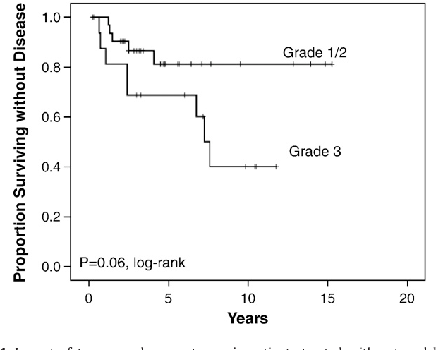 Fig. 4. Impact of tumor grade on outcome in patients treated with external beam irradiation.