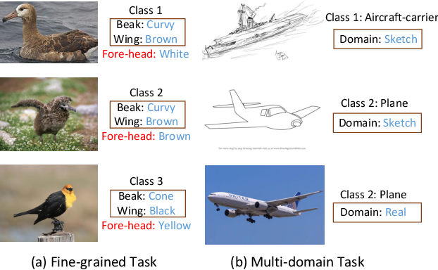 Figure 1 for Disentangled Feature Representation for Few-shot Image Classification