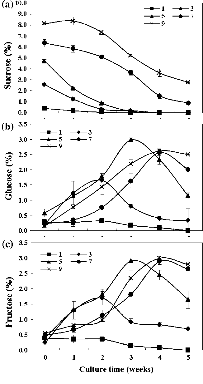 Fig. 3 Changes of soluble sugar content in the culture medium during 5 weeks of bioreactor culture of E. angustifolia adventitious roots. Bars mean ± SE (n = 3)