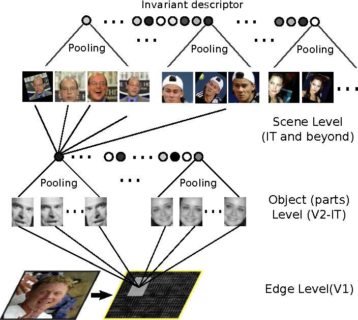 Figure 1 for Can a biologically-plausible hierarchy effectively replace face detection, alignment, and recognition pipelines?