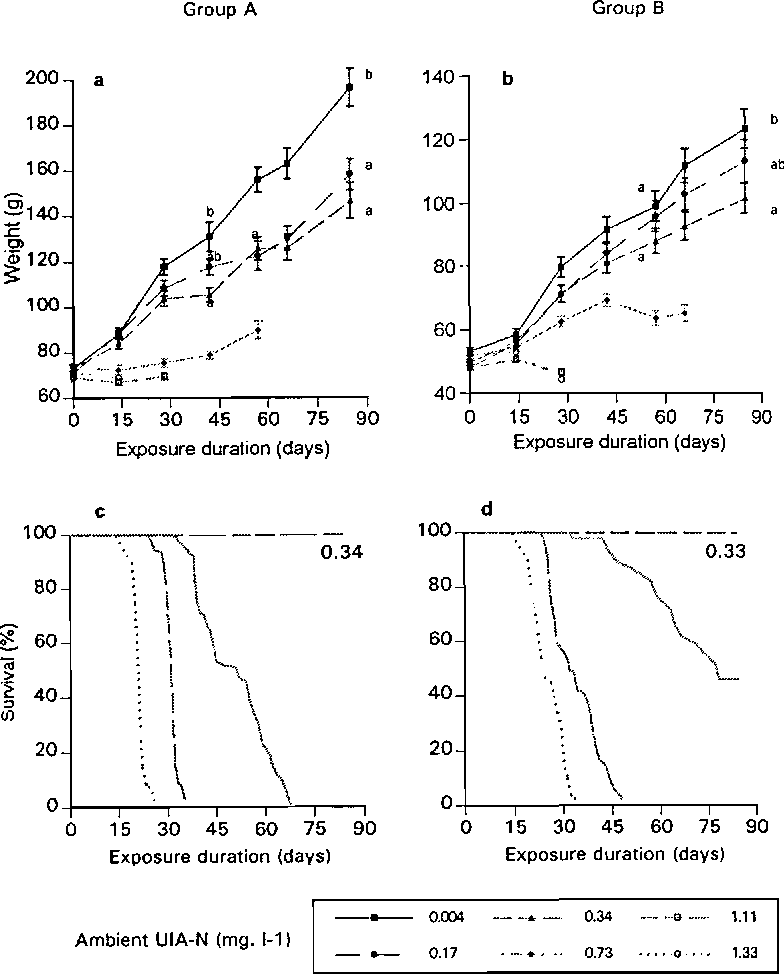 Figure 1 from Toxicity of ammonia to turbot juveniles : 1  effects