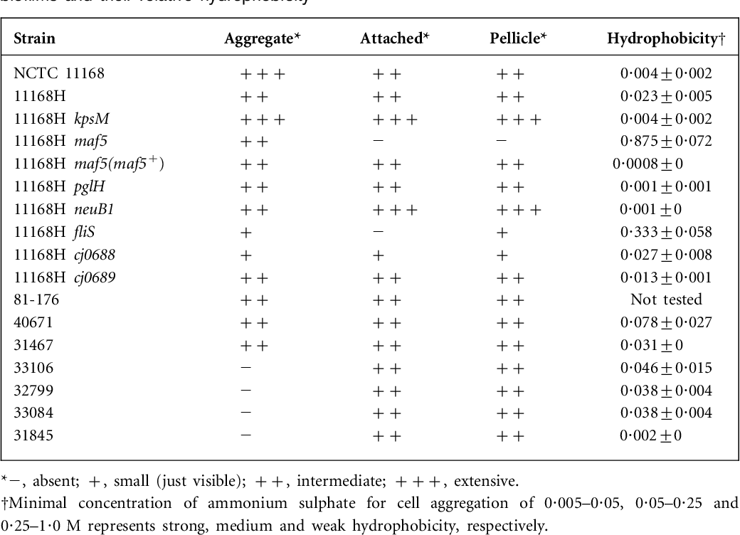 Table 1 from Biofilm formation in Campylobacter jejuni