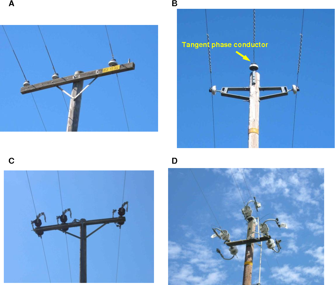 PDF] IDENTIFYING ELECTRIC DISTRIBUTION POLES FOR PRIORITY