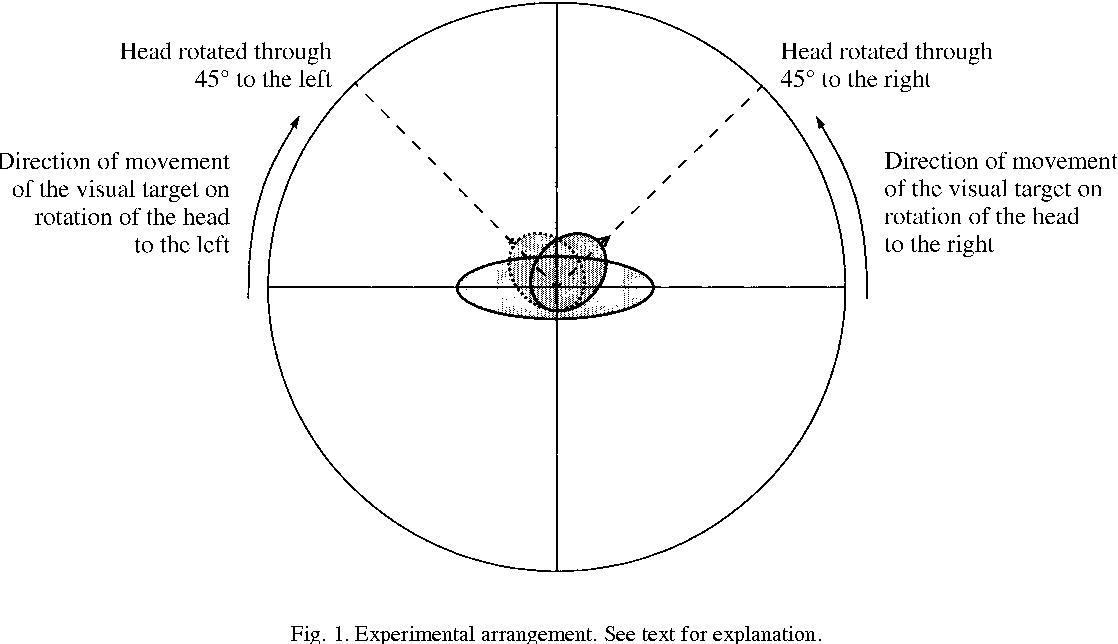 """Frame of Reference for Describing Space in Defining the """"Straight ..."""