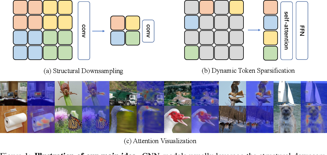 Figure 1 for DynamicViT: Efficient Vision Transformers with Dynamic Token Sparsification