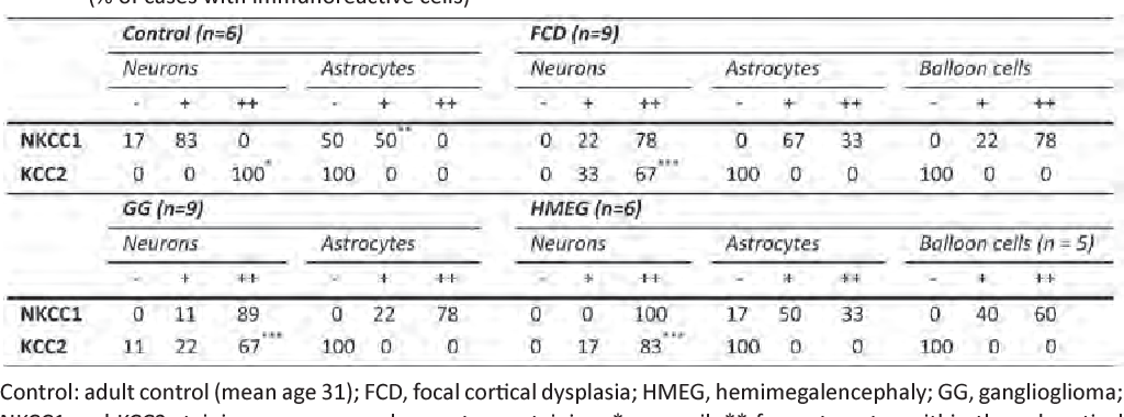 Table 2. NKCC1 and KCC2 distribution in different cellular types in cases of FCD, HMEG and DNT