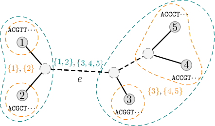 Figure 1 for Improved Variational Bayesian Phylogenetic Inference with Normalizing Flows