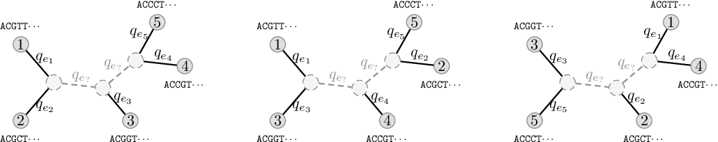Figure 3 for Improved Variational Bayesian Phylogenetic Inference with Normalizing Flows