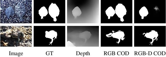 Figure 1 for Depth-Guided Camouflaged Object Detection